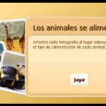 Els animals s'alimenten