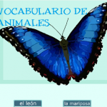 VOCABULARIO ANIMALES EN GIF